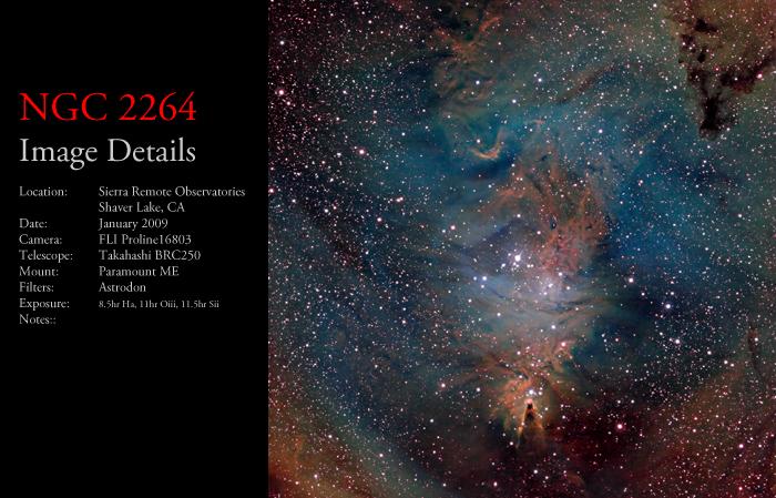 NGC 2264 – The Cone & Foxfur Nebulae