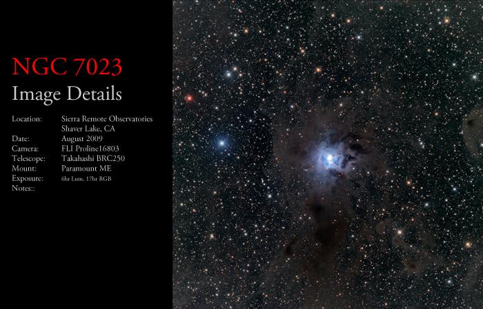 NGC 7023 – The Iris Nebula